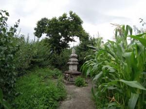 메인-방광-산동 089