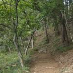 7.미동숲길